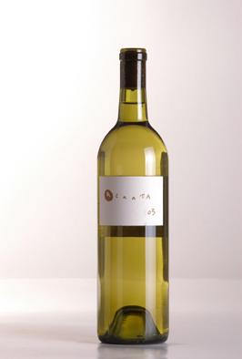 Cata de un vino mexicano: Sinónimo, 2005