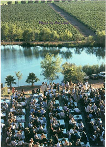 Curso de Vino en Mexico DF