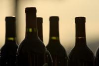 A brindar con vinos mexicanos