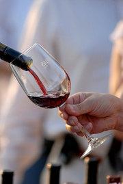 Presentaciones interesantes sobre vinos mexicanos