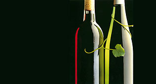 Se busca aguardiente de uva