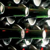 Rica cata de vinos rosados, claretes y tintos jovenes