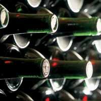 Rica cata de vinos mexicanos