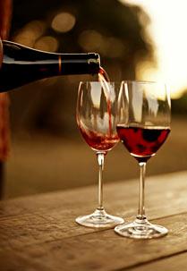 Cata de unos ricos vinos mexicanos
