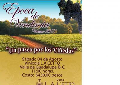 El consumo de vino en Mexico