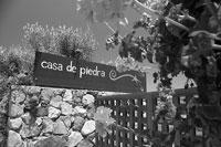 Venga a descubrir la vinicola Casa de Piedra (Mexico)