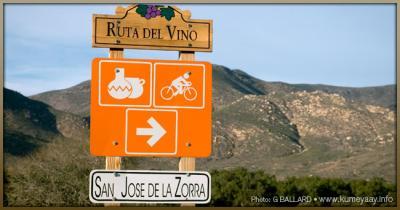 En la ruta del vino