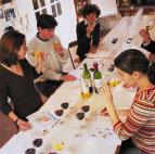 Cofradia del vino en Mexico