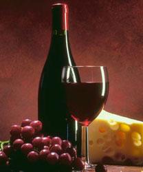 Descubra la vinicola mexicana Freixenet