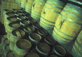 Una vida dedicada al vino