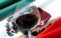 Estudiante busca practicas en vinos mexicanos
