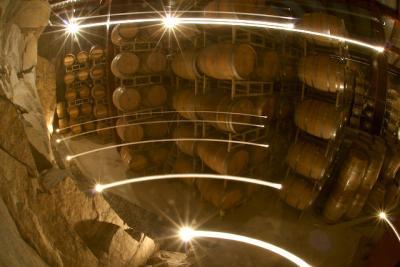 10 vinos mexicanos recomendados por los expertos